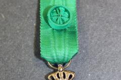 16.-Ruotsalainen-Vaasa-ritarikunta-KI